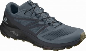 Buty Salomon Sense Ride 2 Stormy 406739