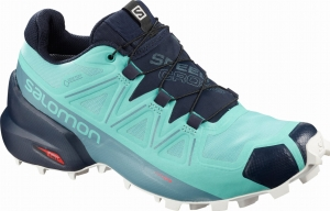Buty Salomon Speedcross 5 GTX W Meadowbroo/Navy