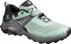 Buty Salomon X RAISE GTX W Green Mili 410417