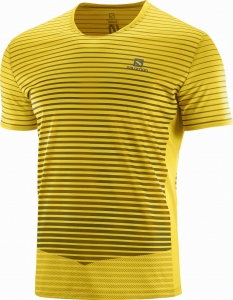 Koszulka Salomon Sense TEE M Lemon Curry C12760