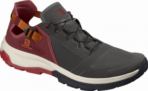 Buty Salomon Techamphibian 4 Beluga/Russet Orange 406809