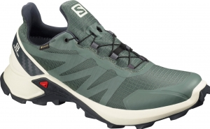 Buty Salomon Supercross GTX Balsam Green 409542