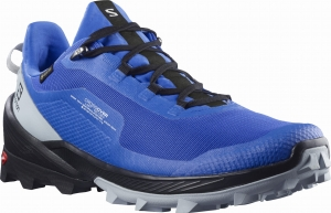 Buty Salomon CROSS OVER GTX Palace Blue/Black/Pe 412860