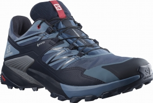 Buty Salomon WINGS SKY GORE-TEX Dark Denim/Night Sky 413861