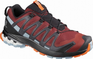 Buty Salomon XA Pro 3D V8 Madder Brown 411176